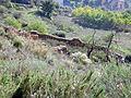 246 Restes de murs al camí del Castellot (Artesa de Segre).JPG