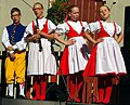 27.8.16 Strakonice MDF Saturday 1000 032 (29172679362).jpg