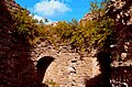 2852. Koporye. Fortress.jpg