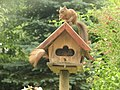 2 squirrels in the bird-home in the garden, eating al kind of seeds, but special sunflower seed - panoramio.jpg