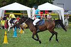 4ème manche du championnat suisse de Pony games 2013 - 25082013 - Laconnex 14.jpg