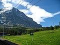 5073 - Grindelwald-Brandegg - View from Wengernalpbahn.JPG