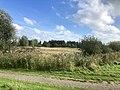 5985 Scouting.Tiny.Houses.Westpark.DeHeld.Leegkerk.202009.HoenDiep.jpg