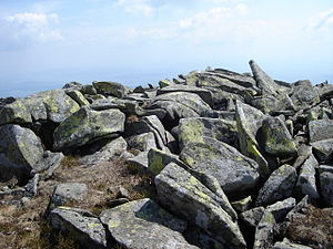 Babia Góra - Lichen-covered stone slabs on the top