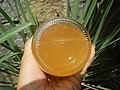 9896Barnes Naturals Apple Cider Vinegar 06.jpg