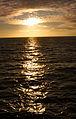 Açores 2010-07-20 (5111357644).jpg