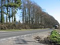 A339 - looking towards Basingstoke - geograph.org.uk - 701715.jpg