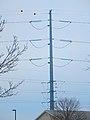 ATC Power Line - panoramio (135).jpg