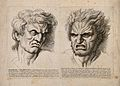 A face expressing hatred and jealousy (left) and a face expr Wellcome V0009406.jpg