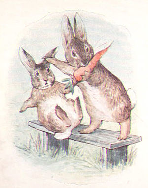 The Story of a Fierce Bad Rabbit - A Fierce Bad Rabbit takes a carrot from the good rabbit