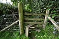 A stile in the corner of a field between Blackwell Wood and Castle Lane - geograph.org.uk - 2064597.jpg