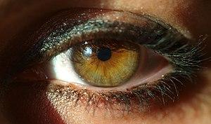 Česky: Ženské oko. English: A woman's eye. Esp...