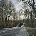 Aanzicht op de paraboolvormige westelijke tunnel voor snelverkeer, onder de spoordijk met spoorlijn, met doorkijk - Kerkrade - 20388033 - RCE.jpg