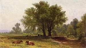 Should Dairy Products Be Part of My Fertility ...