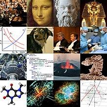 5 disciplines of social science