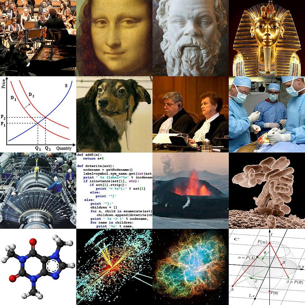 Academic disciplines (collage)