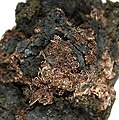 Acanthite-Silver-tuc8-107d.jpg