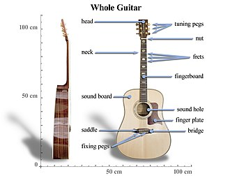 Acoustic guitar - Basic anatomy of an acoustic guitar.