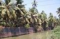 Actually a town's drain in Gokarna - panoramio.jpg