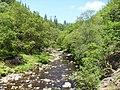 Afon Gain near Ganllywd - panoramio.jpg