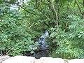 Afon Llugwy downstream of the bridge - geograph.org.uk - 931410.jpg