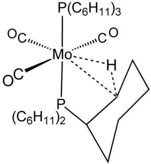 Agostic interaction - Mo(PCy<sub>3</sub>)2(CO)3, featuring an agostic interaction.