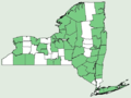 Agrimonia gryposepala NY-dist-map.png