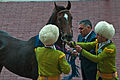 Ahal Velayat Hippodrome - Flickr - Kerri-Jo (63).jpg