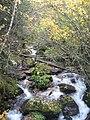 Aiguestortes stream 01.JPG