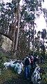Akie, Bogotá, Bogota, Colombia - panoramio.jpg