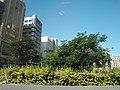 Al Rigga - Dubai - United Arab Emirates - panoramio (2).jpg