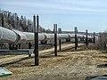 Alaska Pipeline 22.jpg