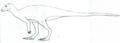 Albertadromeus LM.png