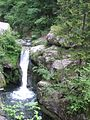 Algua torrente Serina 01.jpg