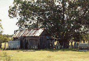 Duckinwilla, Queensland - The heritage-listed Allan Slab Hut in Duckinwilla, 2000
