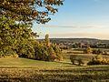 Altenburg Wiesen PA290036.jpg