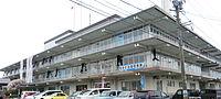 Amakusa city hall.JPG