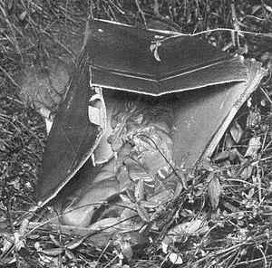 Boy in the Box (Philadelphia) - Crime scene where the body was found.
