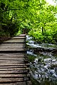Andro Galinovic - Waterway 1.jpg
