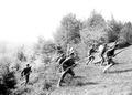 Angreifende Infanteristen brechen aus dem Wald hervor - CH-BAR - 3241232.tif