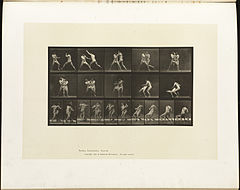 Animal locomotion. Plate 331 (Boston Public Library).jpg