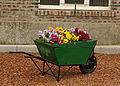Anneux Fleurs02.jpg