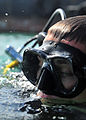 Anti-terrorism force protection dive 130130-N-RE144-135.jpg