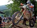 Antti Hellsten WEC Italy 2010.jpg