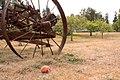 Apple and wheel (9612482777).jpg