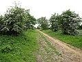 Approaching Southgate - geograph.org.uk - 1317481.jpg