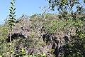 Araguainha - State of Mato Grosso, Brazil - panoramio (752).jpg