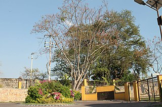 Yautepec, Morelos Municipality in Morelos, Mexico