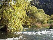 Arpa river.jpg