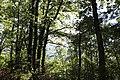 Arzakan-Meghradzor Sanctuary 018.jpg